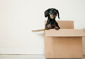 How-to-Hire-a-Moving-Company